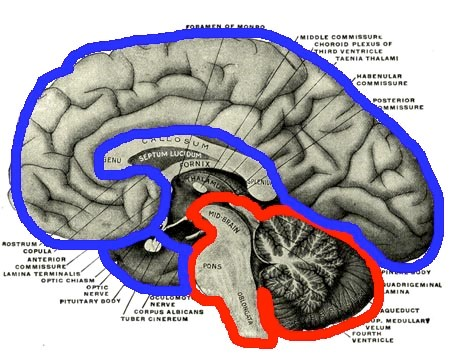 Blood flow to areas of the brain based on state of being
